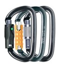 PETZL, Am'D Screw Lock Aluminum Carabiner, BLACK